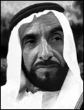 زايد بن سلطان آل نهيان